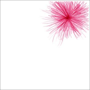 riedel_florals_pink006.jpg
