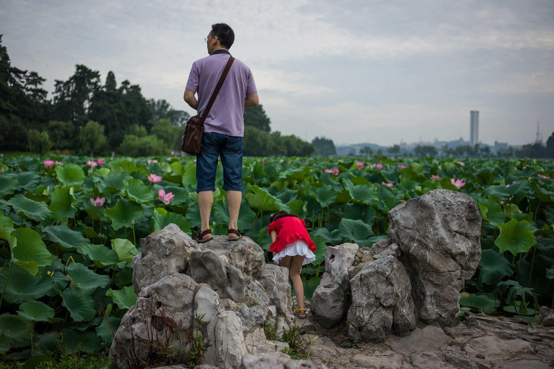 Nanjing (Lotus) 2013