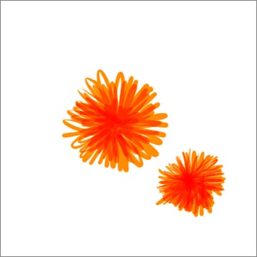 riedel_florals_orange001.jpg