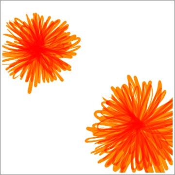 riedel_florals_orange006.jpg