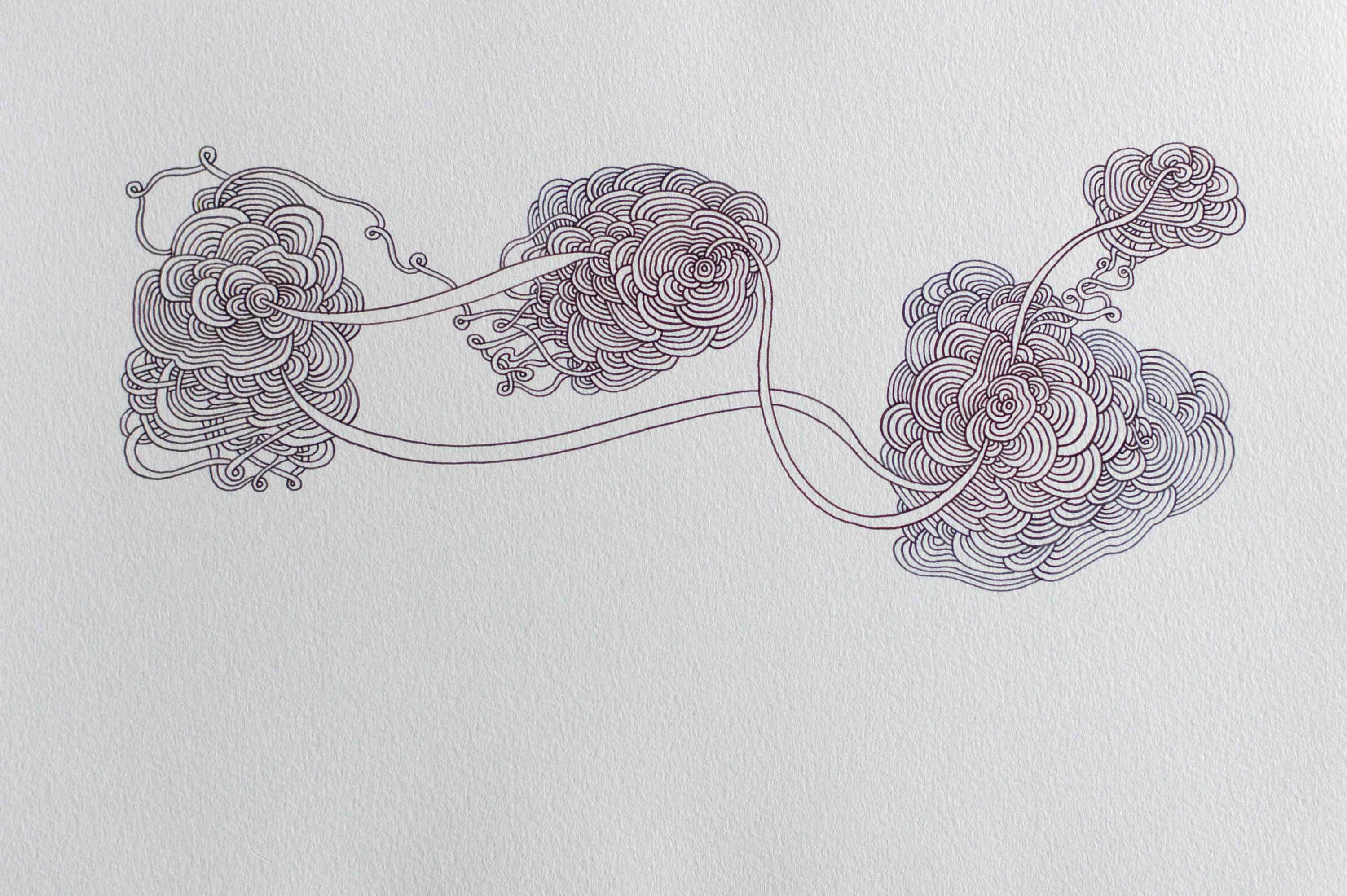 Grown Drawing Unravelled